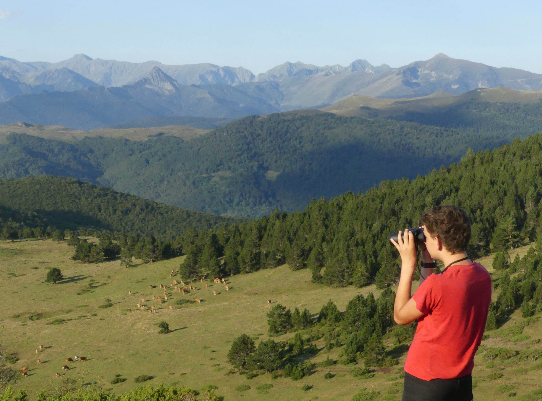 Un adolescent qui regarde aux jumelles en montagne